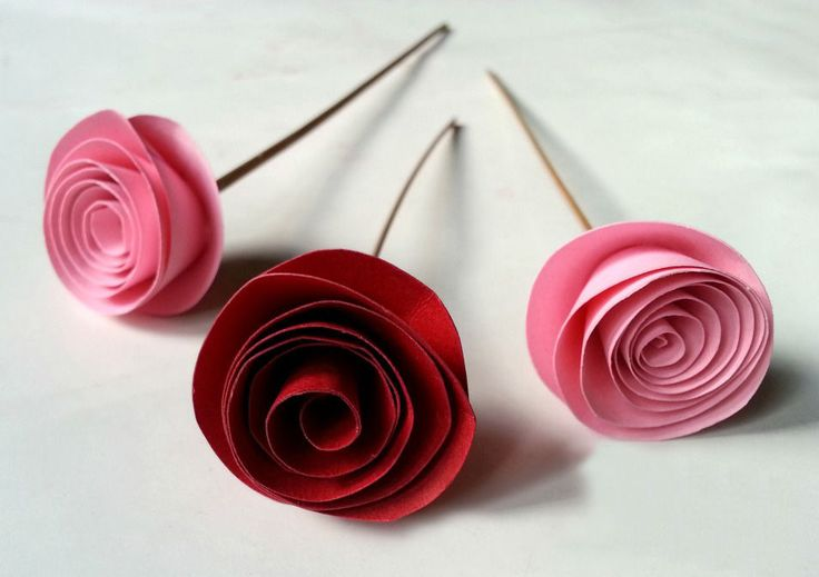 Fabulous & Easy Rolled Paper Roses - DIY Projects for Teens