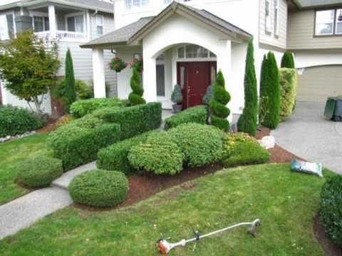 pruning shrubs and trees,call 425-492-5000425-492-5000 Bothell , Mill Creek, Lynnwood Wa 98012 - YouTube