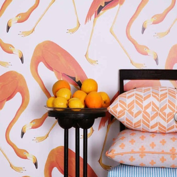 ho doesn't love #flamingos? Customise your Sparkk #fabrics and #wallcoverings from an enormous colour palette and design selection printed to order www.boydblue.com #sparkk #textiles #colour #birds #brisbane #goldcoast #melbourne #interiordesign #design #homedecor #wallpaper #homeinspiration