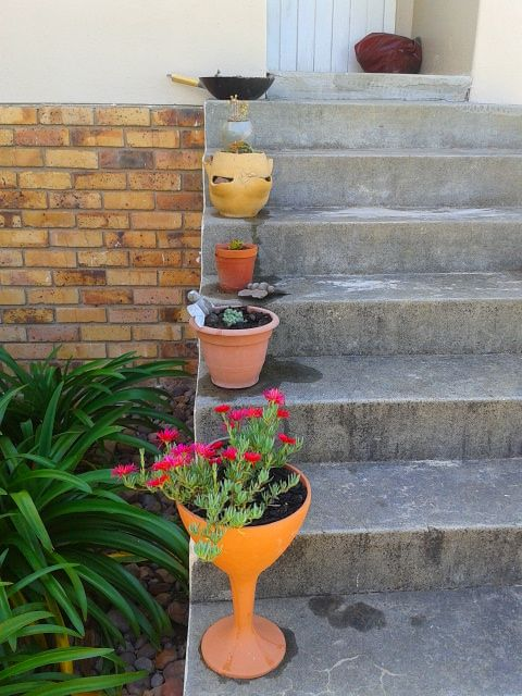 Step plants