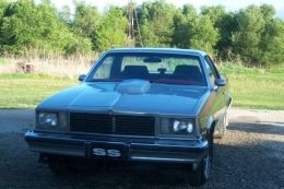 1978 Chevrolet El Camino SS by CashMoney http://www.truckbuilds.net/1978-chevrolet-el-camino-ss-build-by-cashmoney