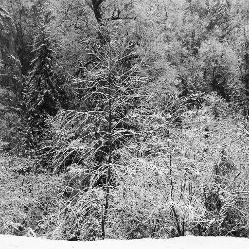Зима Абхазия