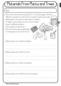 CAPS-Grade3-Lifeskills-Term4-PLANTS-Materials Made from Plants