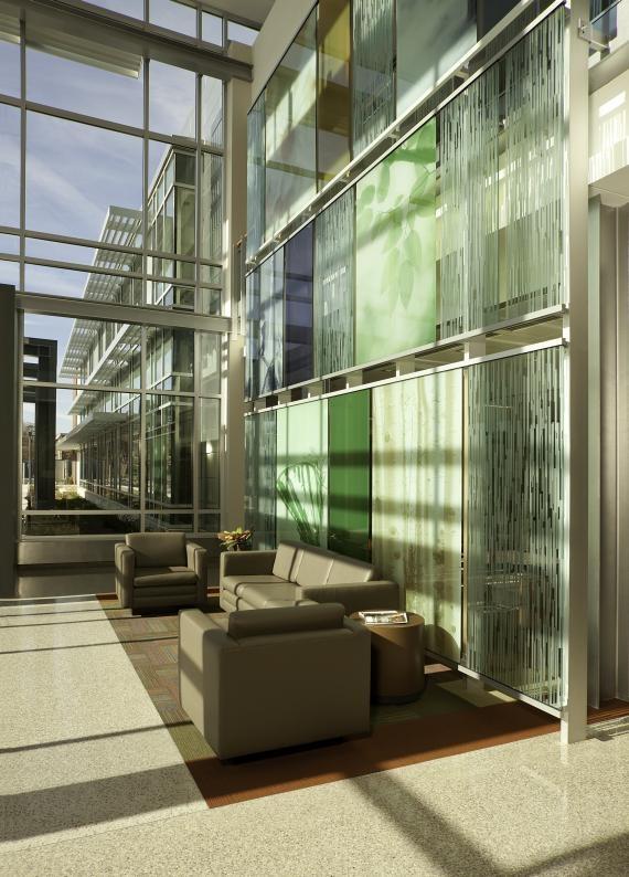 Whittier Living Room Interior Decorator: 9 Best Sustainable Natural Light Interiors: Calgary