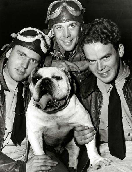 War and Conflict, World War Two, pic: circa 1941, Three pilots of the Eagle Squadron (from the USA) pictured with the squadron mascot 'Bobo' the bulldog (Photo by Popperfoto/Getty Images)