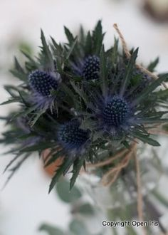 burns night floral arrangements - Google Search