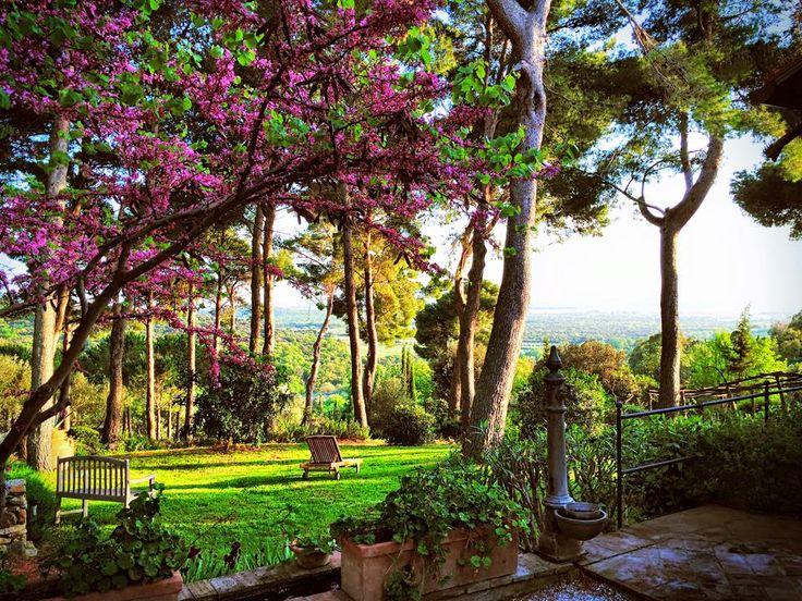 The Park @relais_poggioaisanti #poggioaisanti #relax #nature #verde #spring #flower #colours #sanvincenzo #tuscany #sanvincenzo4u