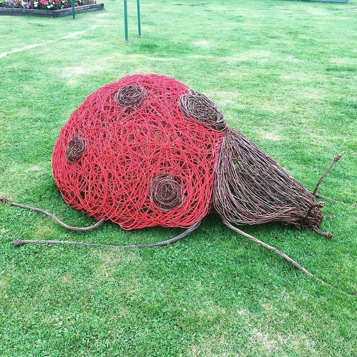 Simple Basket Weaving Willow : Best willow weaving ideas on