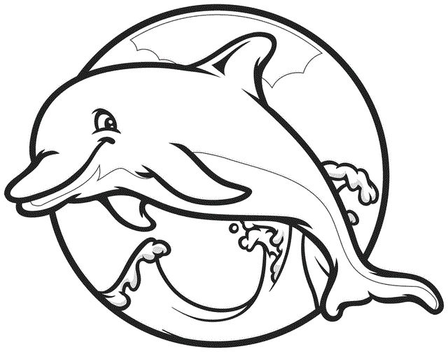 Dolphin With The Head Strong Coloring Pages For Kids Printable Dolphins