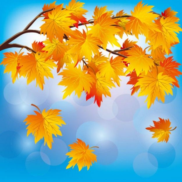 Google Afbeeldingen resultaat voor http://static.freepik.com/vrije-photo/mooie-herfst-blad-achtergrond-vector-materiaal_34-57023.jpg