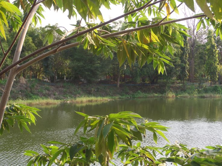 อำเภอหัวหิน (Amphoe Hua Hin) , город จังหวัดประจวบคีรีขันธ์