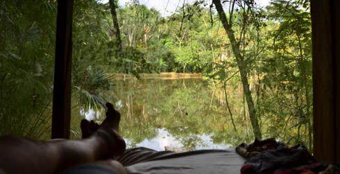 7 Day Authentic Ayahuasca Retreat in Iquitos, Peru   Kapitari