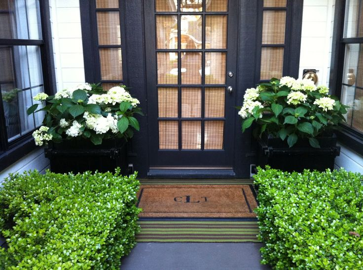 love the boxwood, hydrangea and black trim