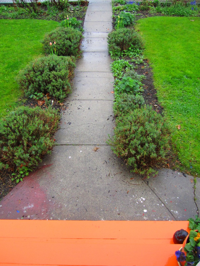 lavender pathway to the world with neon orange steps for creativity.