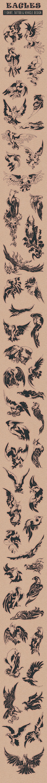 Eagles by Nhat Tien, via Behance