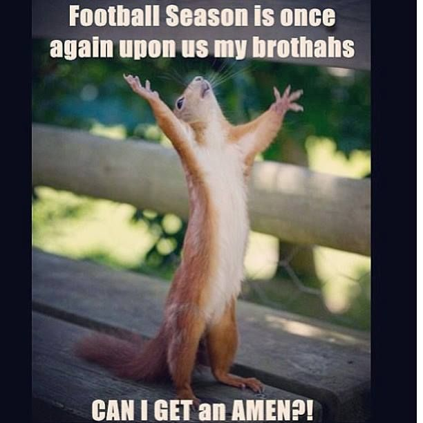 Hooray for football season!