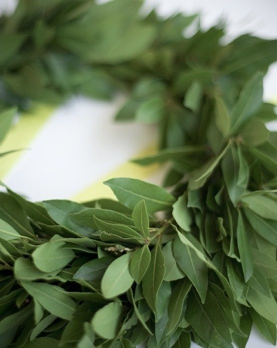 Bay leaf wreath - always have one of these in the kitchen to grab a leaf or two when making soups/stews!