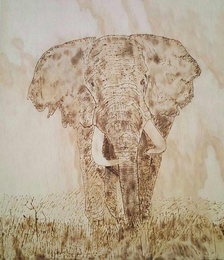 African Elephant pyrography by hady al hayek