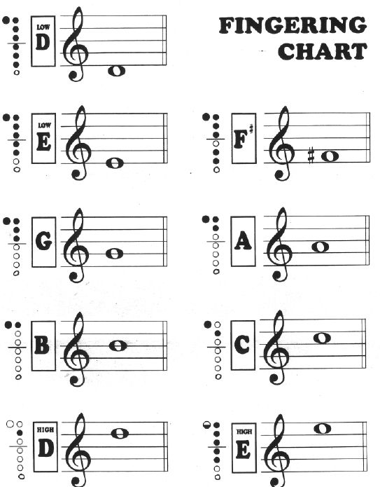 Here is a great list of recorder songs, and there is also this handy dandy recorder fingering chart.  This site also has a TON of other music education resources.