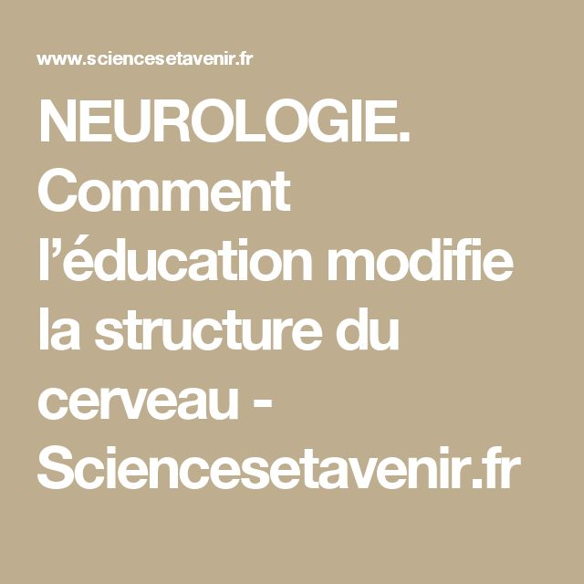 NEUROLOGIE. Comment l'éducation modifie la structure du cerveau - Sciencesetavenir.fr