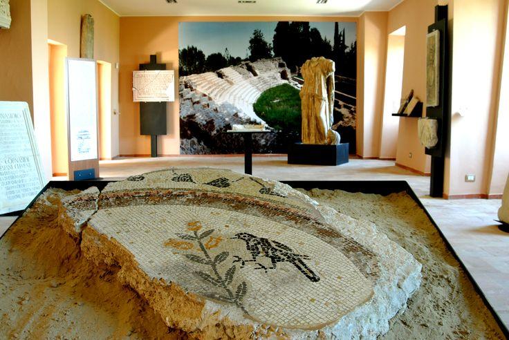Museo archeologico antiquarium #marcafermana #falerone #fermo #marche