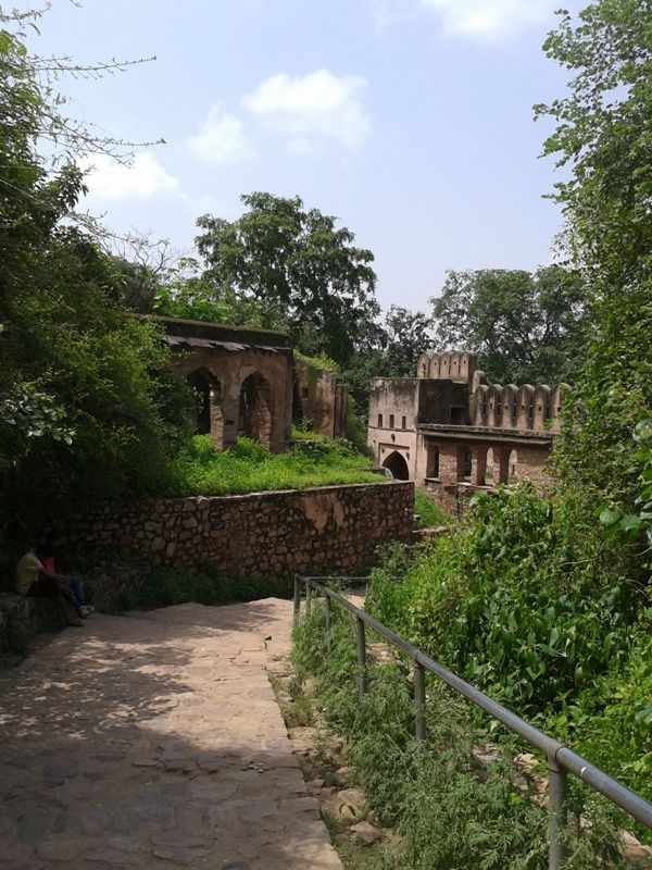 old #monuments in ranthambhore along pathway , leads to another attraction of the fort
