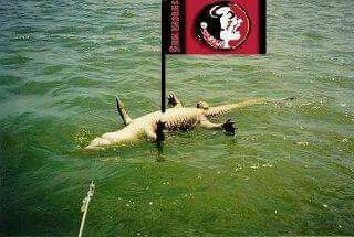 Noles are gator killers