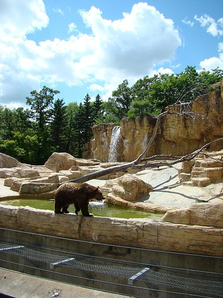 Assiniboine Park: Winnipeg, Manitoba.  It's a park, zoo, conservatory, garden, pavilion museum, steam train and more! What a great place to explore :)    http://www.assiniboinepark.ca