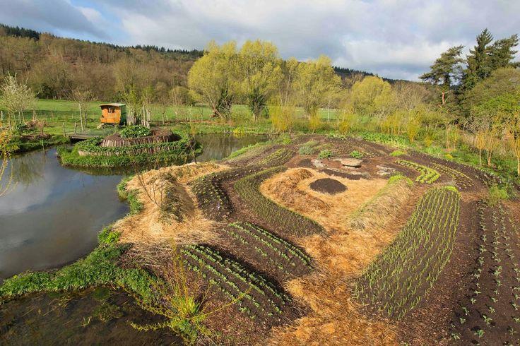 50 best garden permaculture buttes sans travail du sol images on pinterest permaculture for Culture permaculture