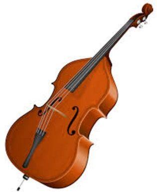 Kontrabas vznikl na začátku 16. století, kdy se formovala a hlasově rozmnožovala nástrojová skupina viola da gamba. Tehdy se kontrabas nazýval jako violon, či kontrabasová viola da gamba.