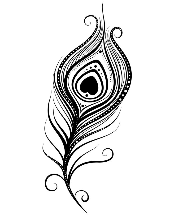 Peacock Feather Coloring Page