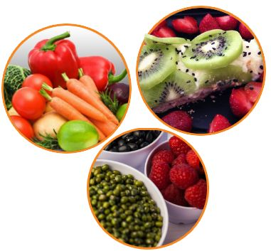 Healthy Food - PROGRAM WEGE