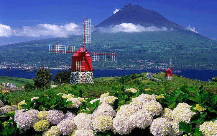 Moinhos da Ilha do Faial -  Açores - Portugal - VortexMag Visitar O(A) Alda Silveira guardou em It's About Me - Portuguese!