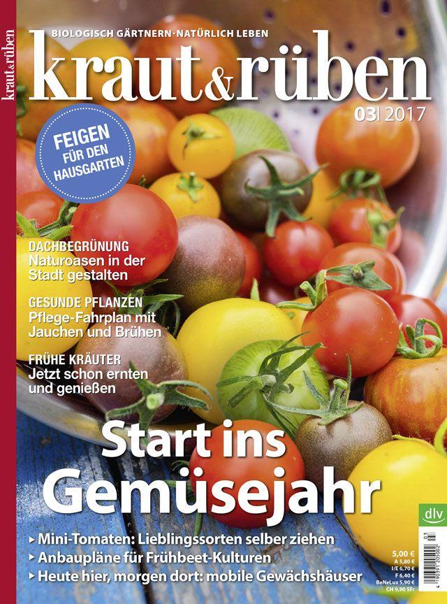 Počet Nápadov Na Tému Kübel Na Pintereste: 17 Najlepších ... Gemuse Im Blumentopf Tipps Pflege