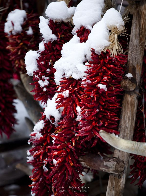 Red Cold Chili Peppers by Evgeny Tchebotarev, via 500px