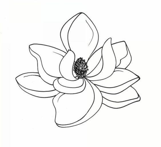 33 best Moagnolia Outlines Flower Tattoo images on Pinterest