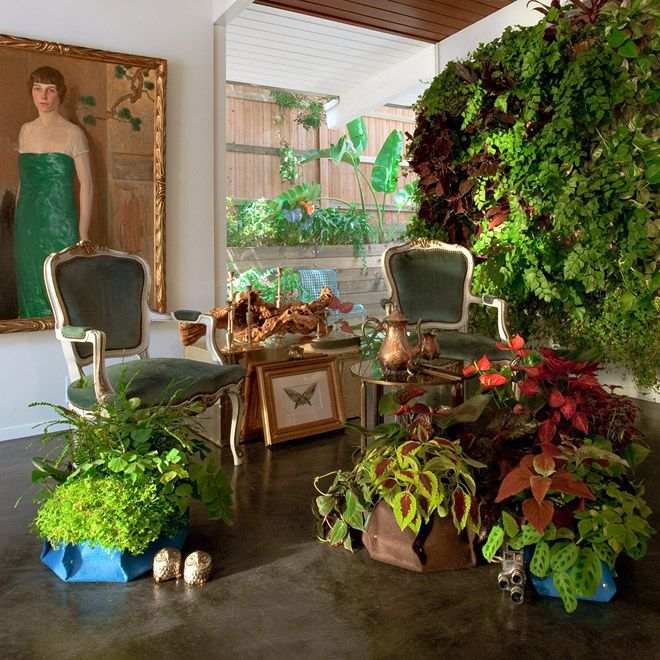 : House Plants, Living Wall, Woolli Pockets, Gardens Wall, Houseplants, Pockets Planters, Green Wall Ferns Interiors, Indoor Plants, Wall Planters