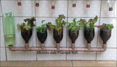 Mundo das Plantas : Horta Vertical com Garrafas Pet,  Irrigação Automá...
