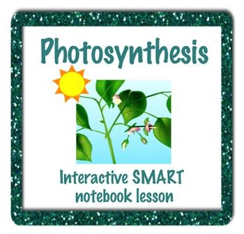 This interactive SMART notebook presentation teaches students about photosynthesis. This is an overview of the formula, and what goes in and out of the light dependent and light independent reactions.
