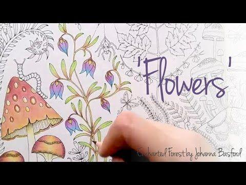 Secret Garden Enchanted Forest Lost Ocean Johanna Basford SGG8