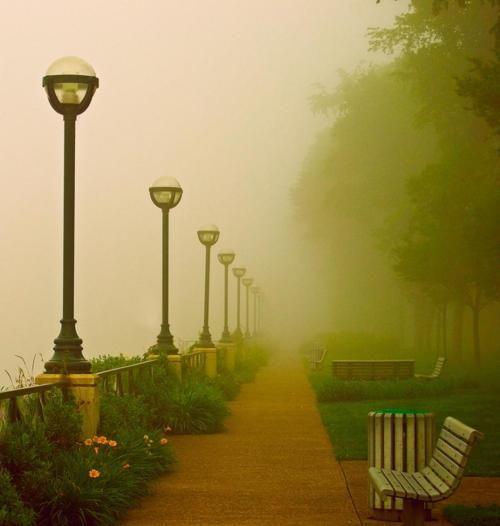 Foggy Path, London, England