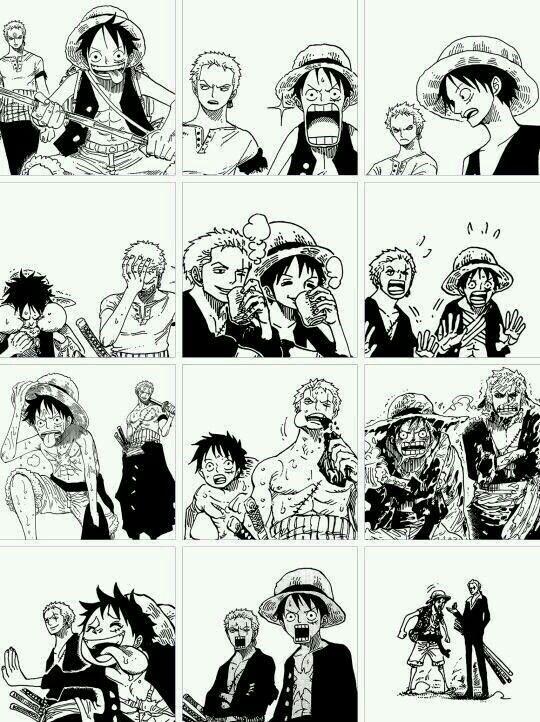 Luffy and Zoro || One Piece