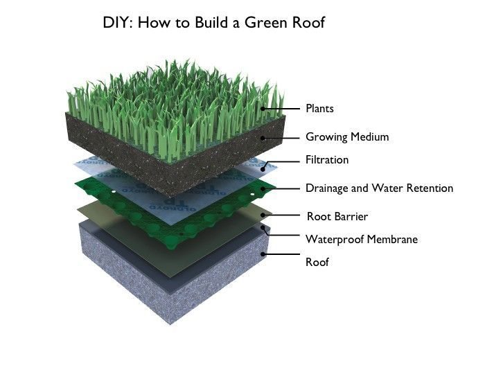 In Our Vision Of The Future Green Roofs Would Be Everywhere Much More Than Just Picturesque Landscapes They Can Protect A In 2020 Green Roof Roof Plants Membrane Roof