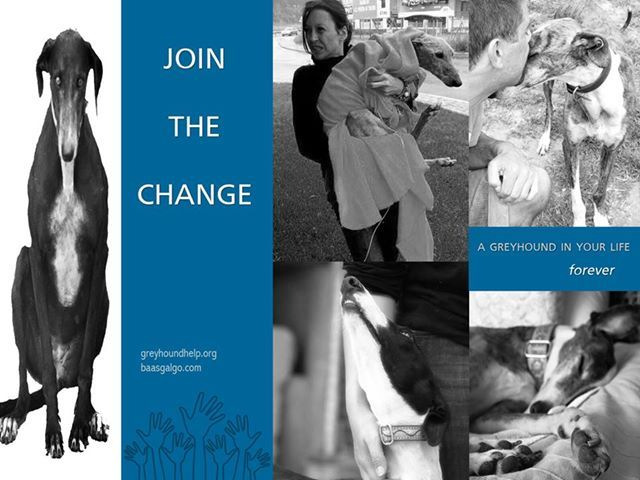 Join the change!