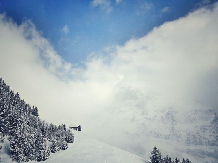 @Grindelwald #snow #winter