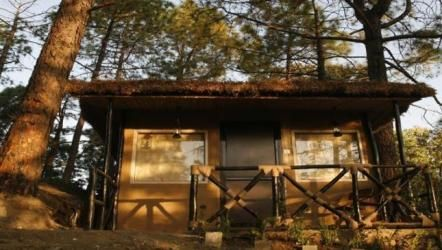 Cottage - Aamod at Shoghi, Himachal Pradesh, India
