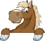 25+ best ideas about Horse facts for kids on Pinterest | Horse ...