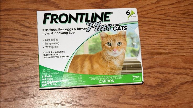 Flea and Tick Remedies 20738: Frontline Plus For Cats And Kittens, 6 Pack Epa Approved -> BUY IT NOW ONLY: $44.99 on eBay!