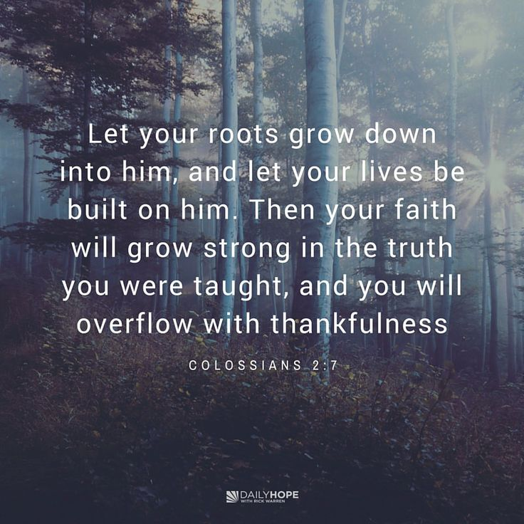 "God wants you to focus on growing, sowing, and going in faith. Learn more in this devotional from Daily Hope with Rick Warren. ""Let your roots grow down into him, and let your lives be built on him. Then your faith will grow strong in the truth you were taught, and you will overflow with thankfulness."" (Colossians 2:7 NLT, second edition)"