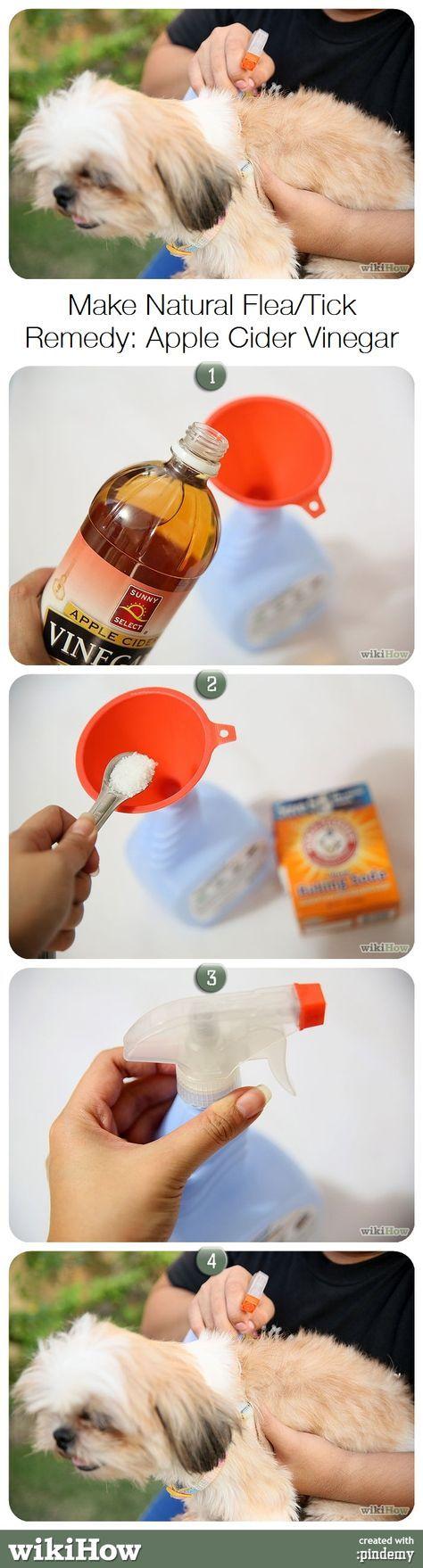 Sprej na blechy a klíšťata - 8 ounces - 1 šálek jablečného octa, 4 ounces- 1/2 šálku teplé vody, 1/2 lžičky soli a 1/2 lžičky sody. ocet, vodu, sůl a sodu dát do rozprašovače, opatrně protřepat a pouít jako sprej na blechy a klíšťata. Kolem očí jen opatrně vetřít rukou.